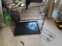 dog cage - collapsible