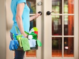 Domestic Cleaning / House Cleaning / Carpet Cleaning / End of Tenancy Cleaning