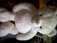 Brand new large supper soft cream teddy bear for sale, unwanted gift.
