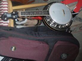A truly exceptional banjo/ukelele + padded case
