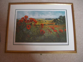 Limited edition signed and framed print of a landscape called Wild Poppies