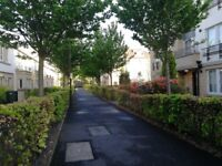 Lovely double bedroom available in 2 bedroom flat. Central Edinburgh (from 22nd June).