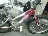 21 inch girls bike