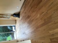 Professional laminate and wood floor fitting