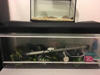 2 reptile tanks