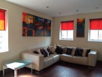 2 bedroom City Centre flat - Victoria Quays- picturesque and very convenient location on River Aire