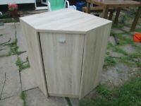 CORNER CUPBOARD with a shelf inside and loads of storage space