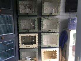 Canary and budgie cages