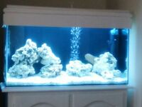 3ft fish tank with White cabinet complete set up with fish