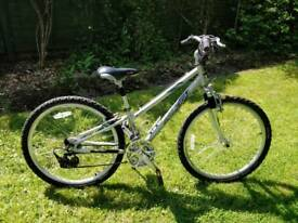Raleigh voyager bike