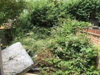 Tree surgery & Garden clearance
