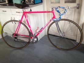 Ultra rare vintage Italian 1985 de franceschi 12 speed road bike,Campagnolo/gipiemme groupse