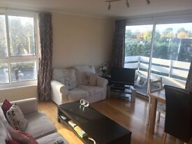 Huge double in friendly flat share