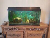 100 litre Fish Tank Aquariun