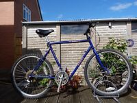 Rudge Bi-frame Ultimate Folding Mountain Bike 18 Speed