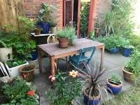 Hampstead Village - Room Available - Short/Long term