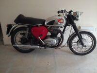 1962 A65 STAR 650cc