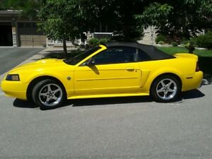 2004 Mustang Convertible! 40th Anniversary Edition! Must Sell!