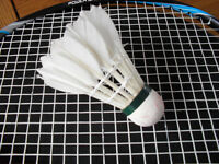 Corfe Mullen Badminton Club looking for Players & Members