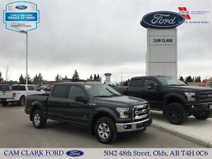 2015 Ford F-150 XLT Eco Boost