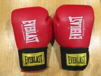 Everlast Boxing Gloves 18oz