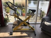 Greg LeMond RevMaster Spinning bike