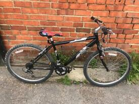 Raleigh Firefly Mountain Bike. Serviced, Very Good Condition. Free Lock, Lights, Delivery