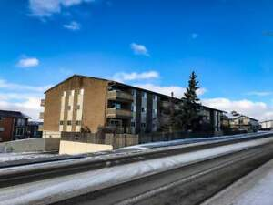 Ridgeview Apartments - 2 Bedroom - Furnished Apartment for Rent