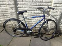 mens 21in ammaco bike, very god condition ready to ride FREE DELIVERY
