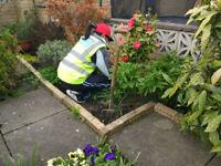 Garden Tidy Up, Design and Maintenance @ Natural Habitat Leeds & Newcastle