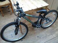 """24"""" Apollo Switch Mountain Bike"""