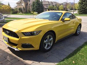 2015 Ford Mustang Ecoboost *Showroom condition