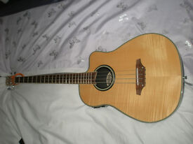Aria Electro Acoustic 4 string bass in excelent used condition.