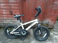 Pirate 14 inch Kids Bike