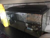 2.5ft = 100 litres fish tank aquarium
