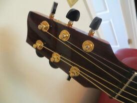 Michael Sanden MasterDesign Jumbo Guitar (Tanglewood TSM3) with B-Band Pickup System & SKB Hard Case