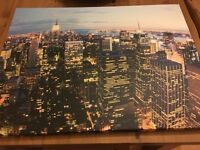 Collection of 5 large Canvas paintings