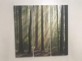 Next canvas prints set of 3 pictures