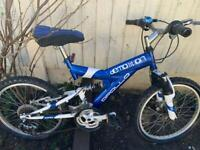 Kids Bike 20 inch(Apollo) demolition
