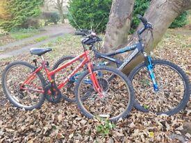 2 x Adult pushbikes. 1 GENTS CHALLENGE RX PRO. 1 X LADIES APPOLLO CORONA