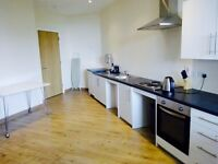 Executive 1 bedroom apartment to let, fully furnished..