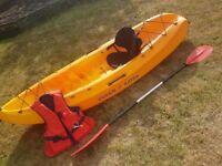 Kayak ocean frenzy