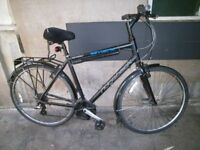 Ridgeback Bicycle for sale...1yr's use only.