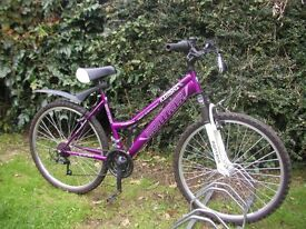 ladies front suspension,17 in frame cycle,mudguard,runs perfectly