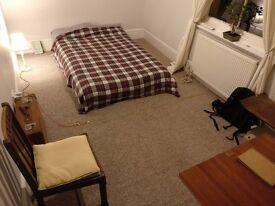 Beautiful 1 bedroom apartment in Goldstone Villas, Hove