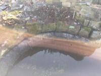 Rockery stones for ponds/ driveways/ grass verges