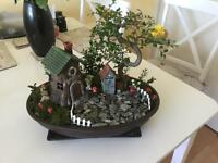 Fairy Garden with live Bonsai Tree