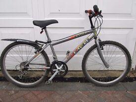 Teenager's Mountain Bike