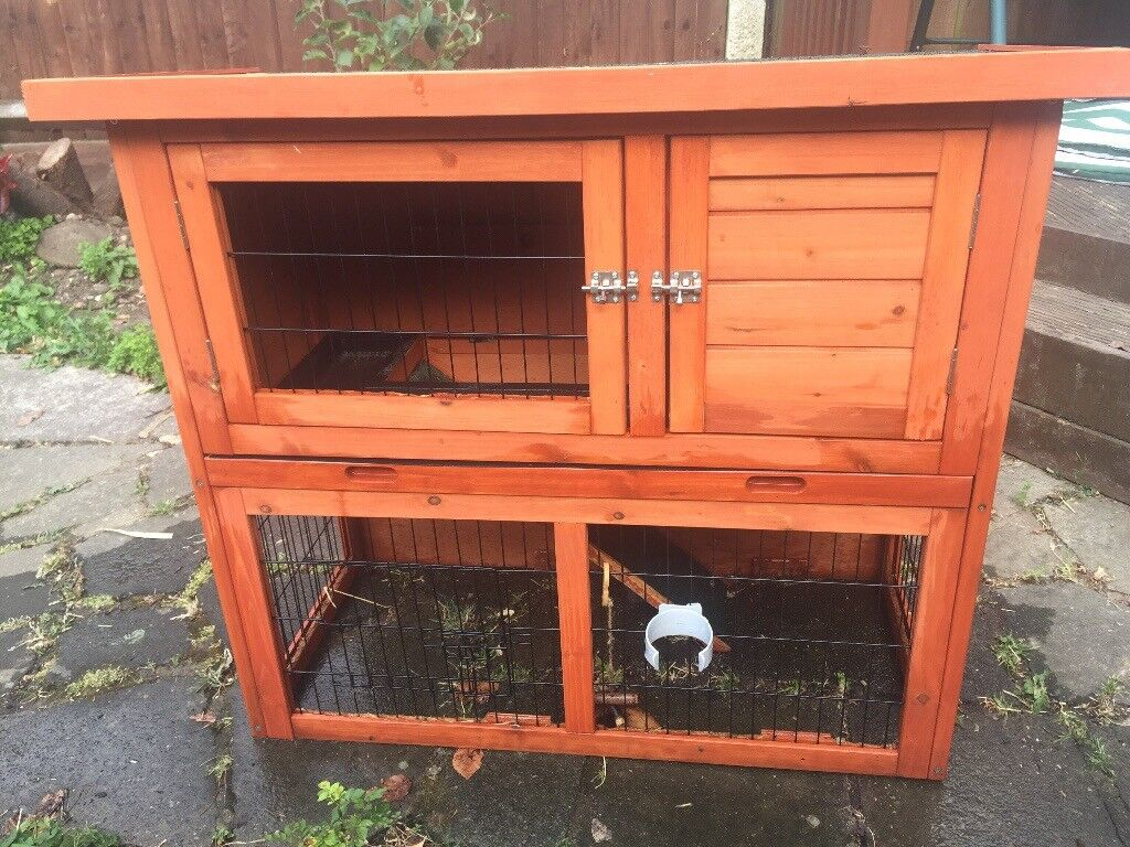 Rabbit And Guinea Pig Hutch For Sale In Bexley London Gumtree