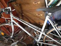 light studnet bike